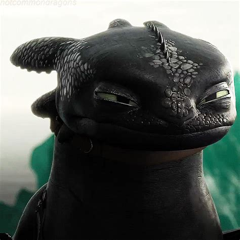[Movies/TV] Toothless Fan Club - Media Discussion - MLP Forums