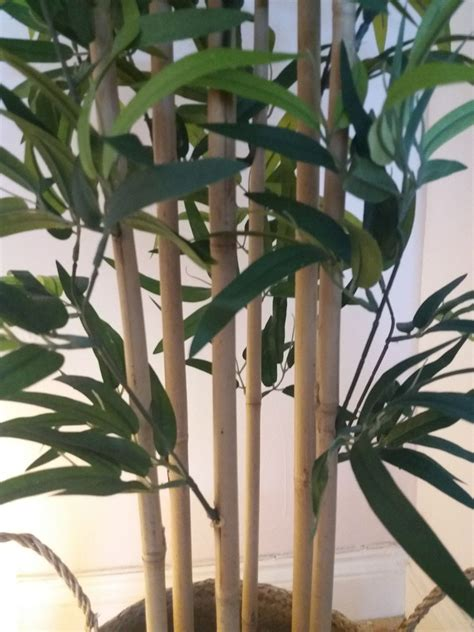 Ikea Bamboo FEJKA Artificial Plant in LU2 Stopsley for £20
